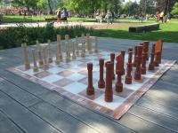 Šach záhradný